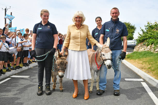 GBR: The Prince Of Wales & Duchess Of Cornwall Visit Devon & Cornwall - Day 3