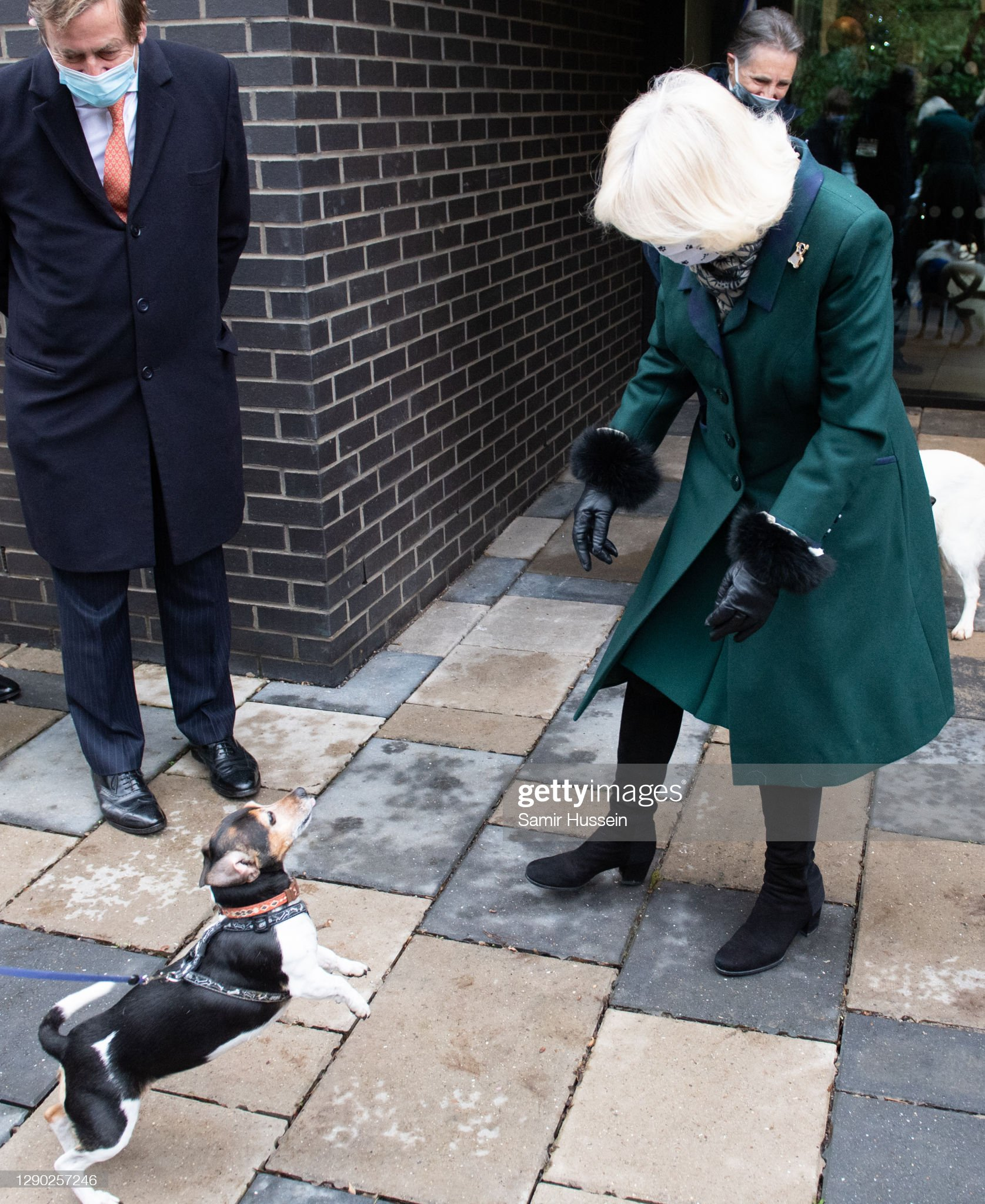 camilla-duchess-of-cornwall-with-her-dog-beth-as-she-visits-battersea-picture-id1290257246