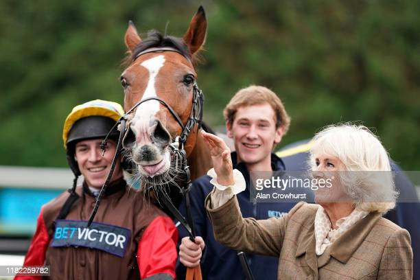 Camilla, Duchess of Cornwall with her horse Pacify after he wins Matchbook Betting Exchange Novices' Hurdle at Kempton Park Racecourse on October 20,...