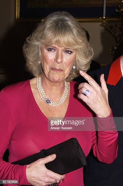 Camilla ParkerBowles attends a dinner at Windsor Castle February 10 2005 in Windsor England The dinner was the first public appearance by the two...
