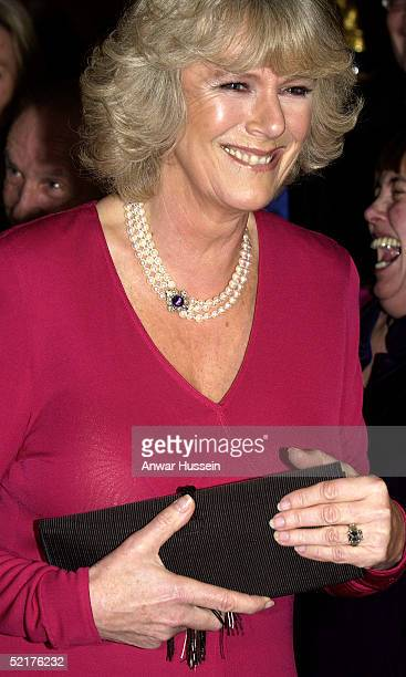 Camilla ParkerBowles fiancee to HRH Prince Charles attends a dinner at Windsor Castle on February 10 2005 in Windsor England It is the couples first...