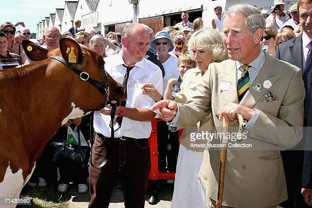 Camilla The Duchess of Cornwall and Prince Charles Prince of Walesmeet an Ayrshire Cow during their visit to the 148th Great Yorkshire Show on July...