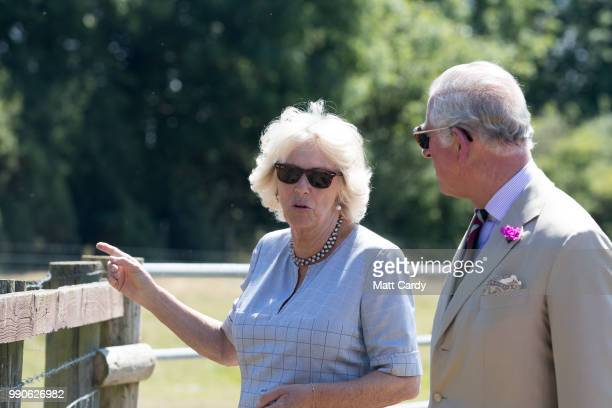 Camilla the Duchess of Cornwall and Prince Charles Prince of Wales visit Dyfed Shire Horse Farm in Eglwyswrw on July 3 2018 in Pembrokeshire Wales...