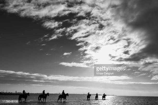 Camille Piantoni riding Sunlight during a beach session for the Mcevoy Mitchell Racing team at Altona beach on February 14 2019 in Melbourne...