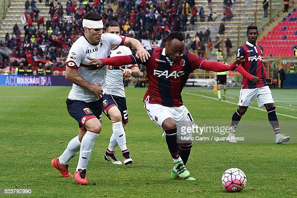 Camilo Zuniga of Bologna FC in action during the Serie A match between Bologna FC and Genoa CFC at Stadio Renato Dall'Ara on April 24 2016 in Bologna...