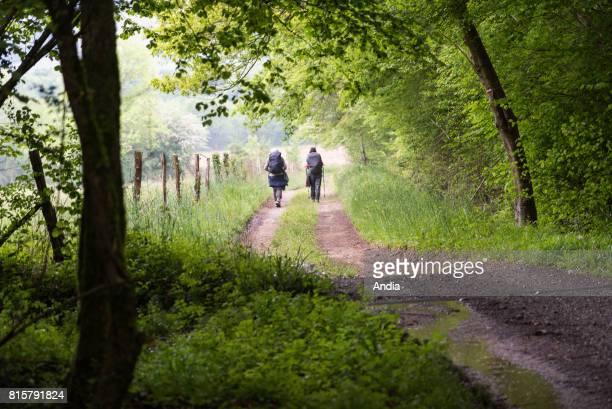 Camino de Santiago pilgrimage route Way of St James Two pilgrims walking along the Voie d'Arles one of the Camino de Santiago pilgrimage routes