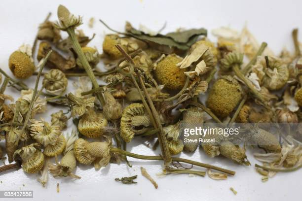 TORONTO ON FEBRUARY 7 Camomile Ingredients for blending your own tea include lavender rose leaves orange camomile star anise and turmeric