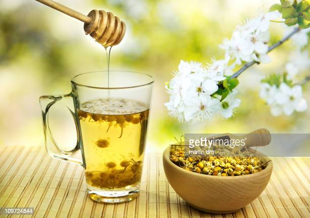 camomile tea - chamomile tea stock photos and pictures