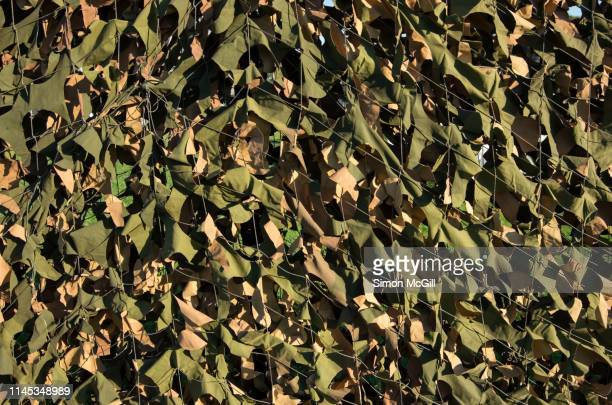 camouflage netting - army stock pictures, royalty-free photos & images
