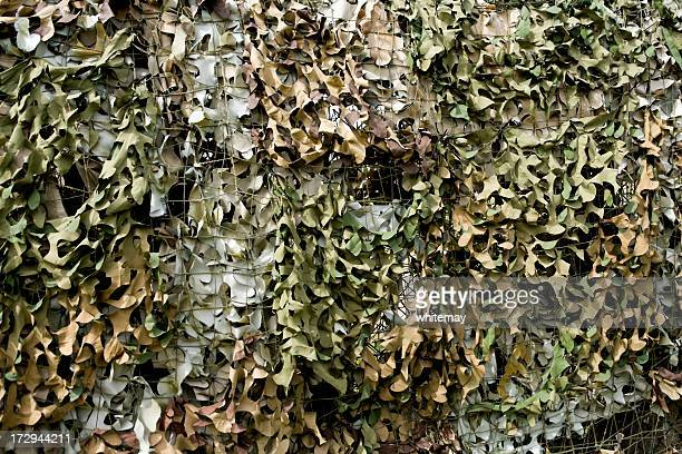 camouflage netting - disguise stock pictures, royalty-free photos & images
