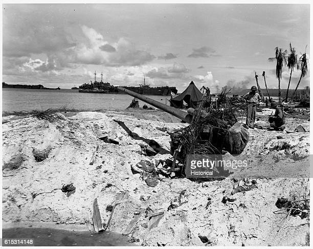 A camouflaged Japanese antiaircraft gun on Biak Island in the Schouten Islands had a dual purpose as a coast defence gun
