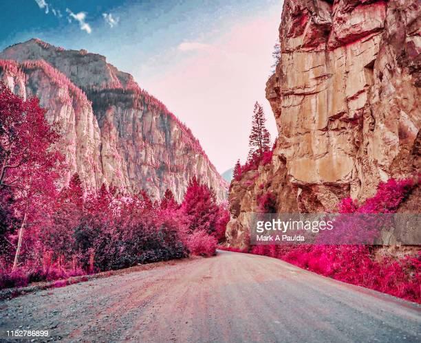 camp bird road in ouray colorado - infrarosso foto e immagini stock