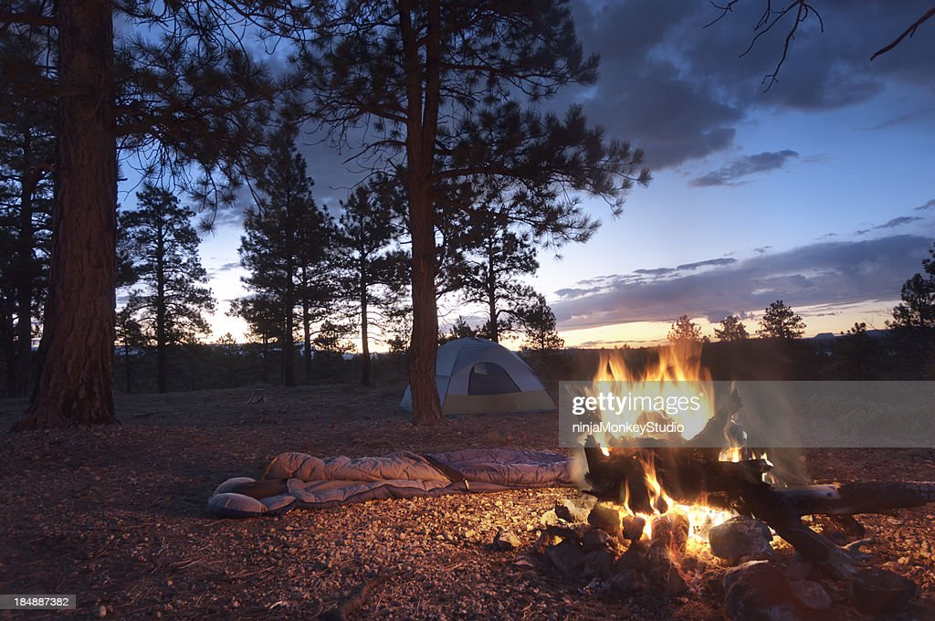 Camp Fire at Dawn : Stock Photo