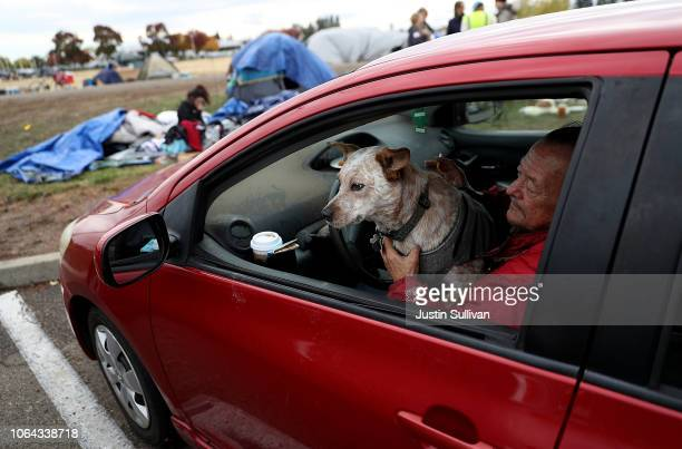 Camp Fire evacuee sits in his car with his dog at a makeshift evacuation camp next to a Walmart store on November 22 2018 in Chico California Fueled...