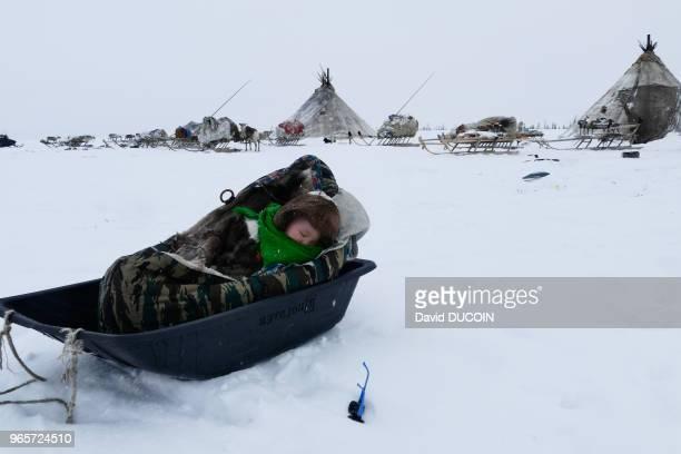 Camp nomade Nenets, enfant dehors dans son berceau, 16 avril 2017, Péninsule de Yamal, Sibérie, Russie.