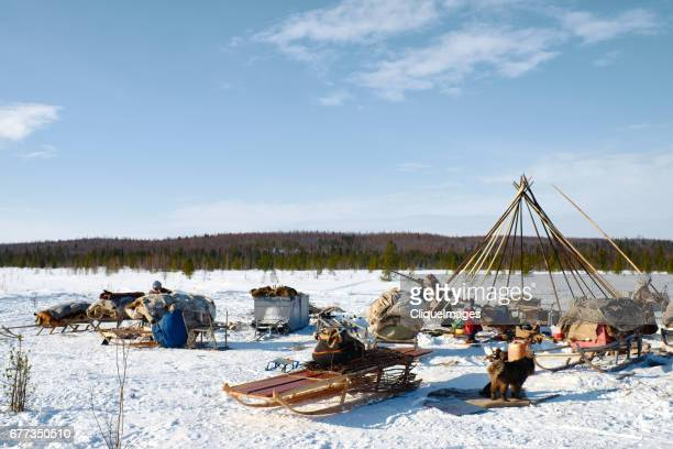 camp of nomadic nenets - cliqueimages stock pictures, royalty-free photos & images