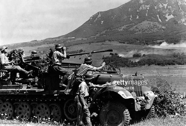 2WW campaign against soviet union Luftwaffe a motorized antiaircraft gun during combat Caucasus mountains war theatersummer 1942