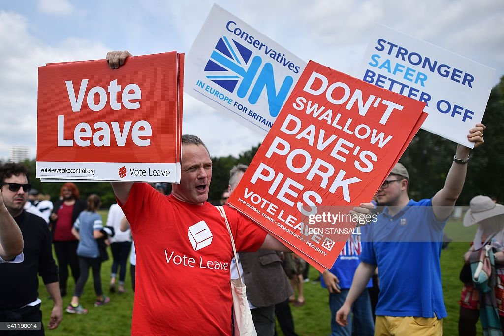 a campaigner for vote leave the official leave campaign