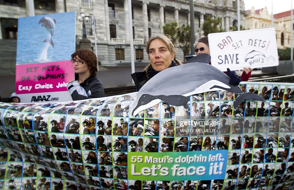 Campaigners attend a protest to protect  : News Photo