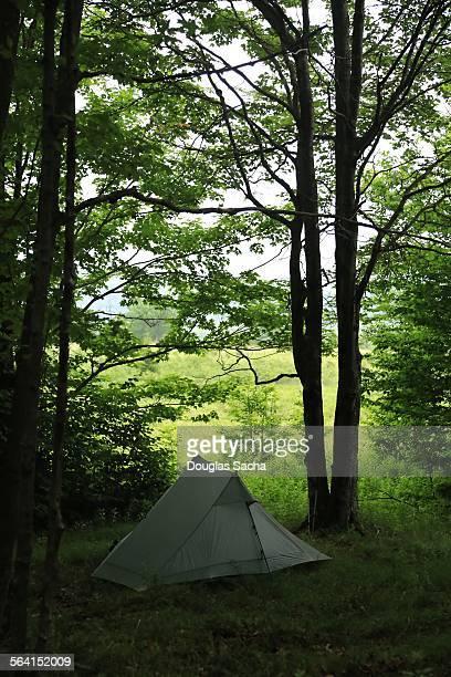 Campers ridge tent