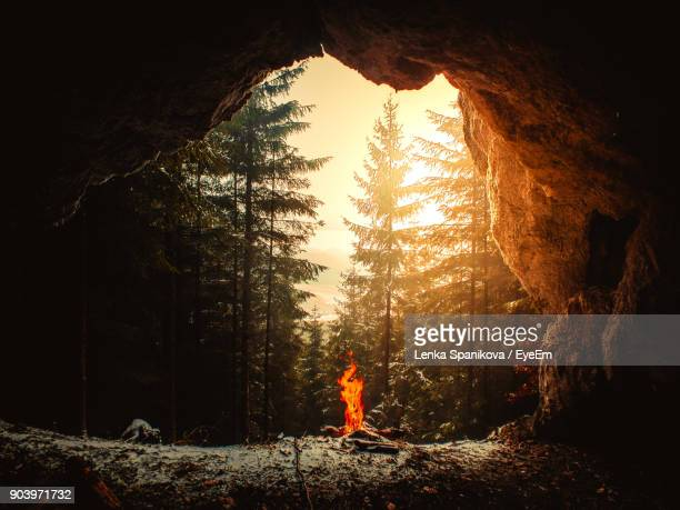 Campfire Against Forest Seen From Cave During Winter