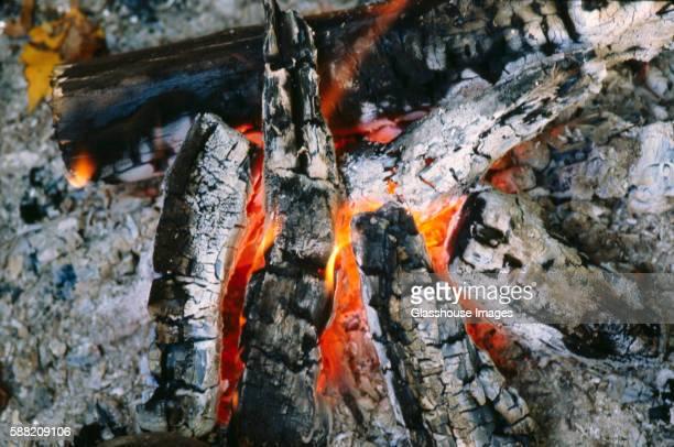 Campfire, Close-Up