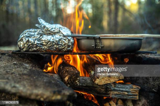 campfire cooking over the coals in the wilderness, baked potato over the fire - 薪 ストックフォトと画像
