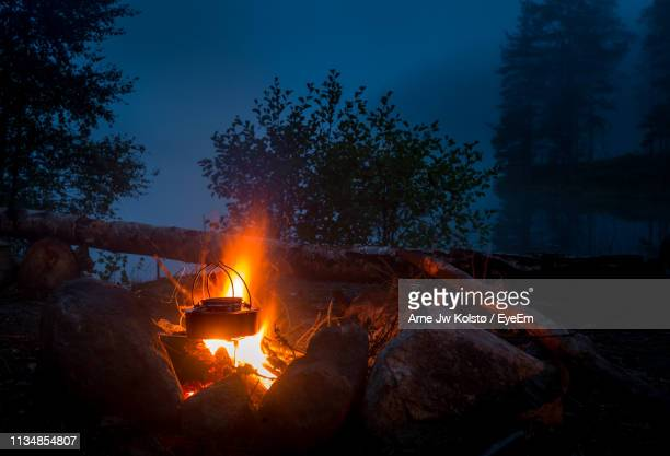 Campfire In Forest At Night
