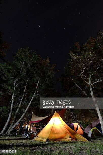 Campground In Forest At Night