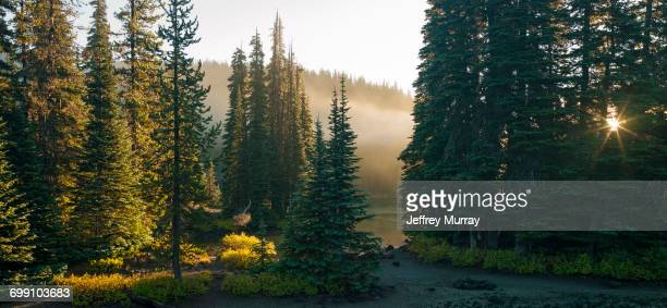a campground located at devils lake on central oregon. - bending stock pictures, royalty-free photos & images