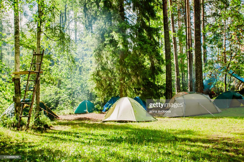 campground on the edge of the forest : Stock Photo