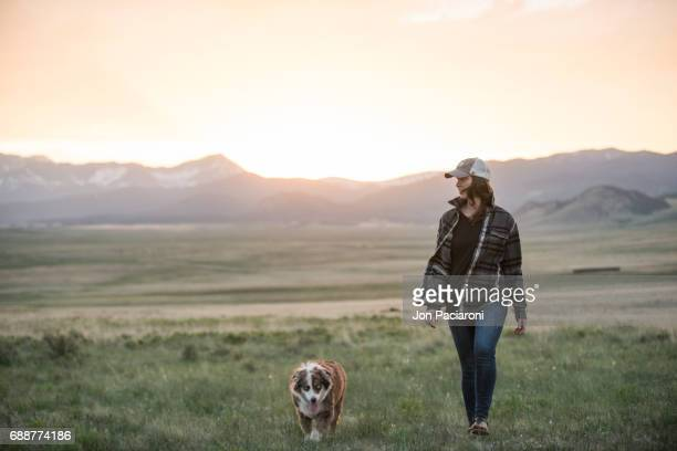 camping and hiking with the dog in colorado - americas next top dog stock pictures, royalty-free photos & images