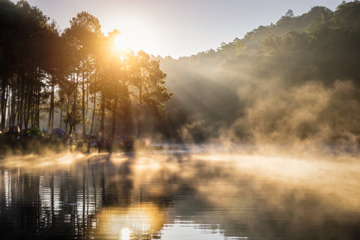 Camping and tent under the pine forest in sunrise at Pang Ung pine forest park, Pang Ung Mae Hong Son near Chiang Mai, Thailand - gettyimageskorea