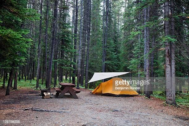 camping ground - キャンプ ストックフォトと画像
