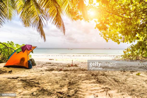 camping in a tropical beach - praslin island - seychelles - pjphoto69 stock pictures, royalty-free photos & images