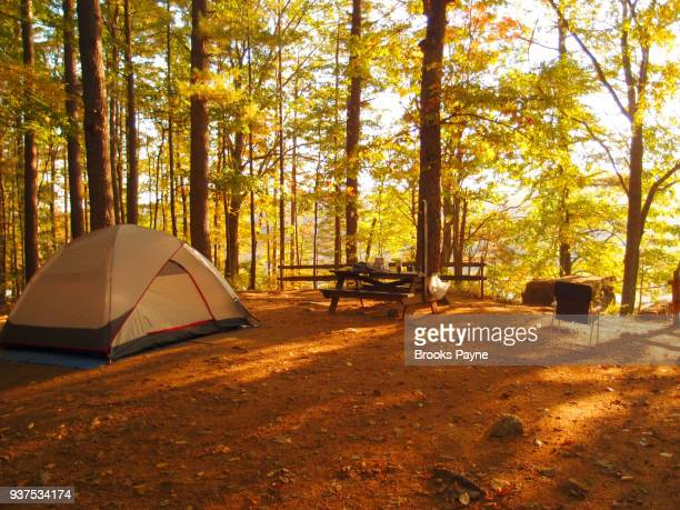 camping in a wooded area. - sturbridge stock photos and pictures