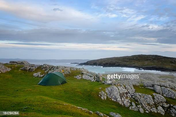 camping in ireland - animals in the wild stock pictures, royalty-free photos & images