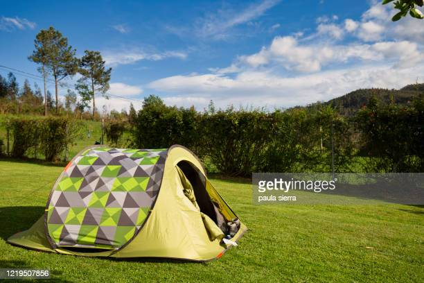 camping in the garden - tent stock pictures, royalty-free photos & images