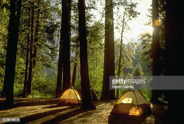 camping in yosemite woods - yosemite nationalpark stock pictures, royalty-free photos & images