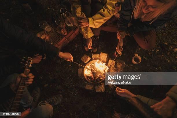キャンプナイト - 暖炉の火 ストックフォトと画像