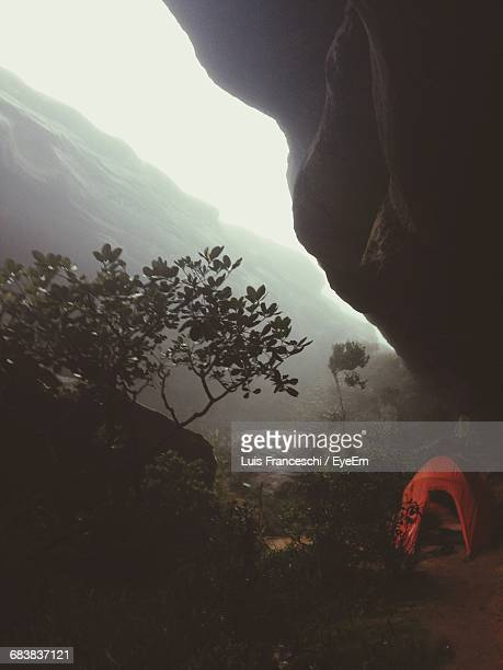 Camping Tent Under Cliff In Forest