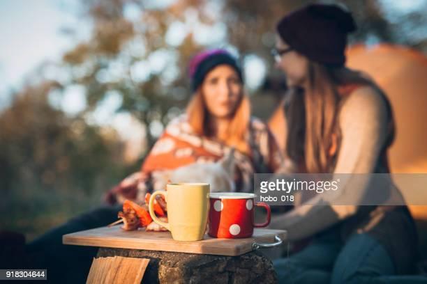 camping tiempo - fuego al aire libre fotografías e imágenes de stock