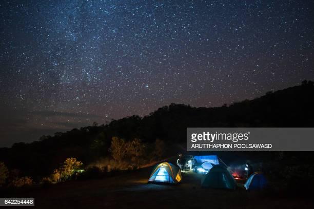 camping under the starry sky , nature landscape - wildpflanze stock-fotos und bilder