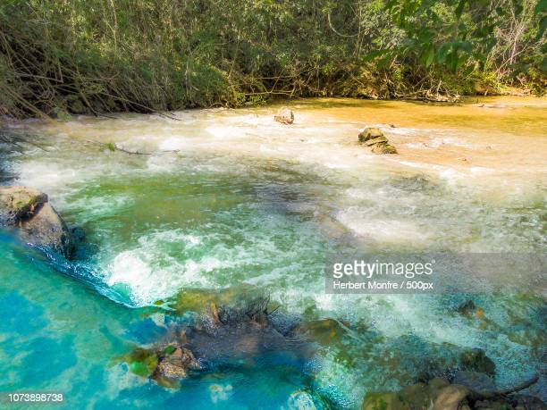 campo limpo paulista, brazil - limpo stock pictures, royalty-free photos & images