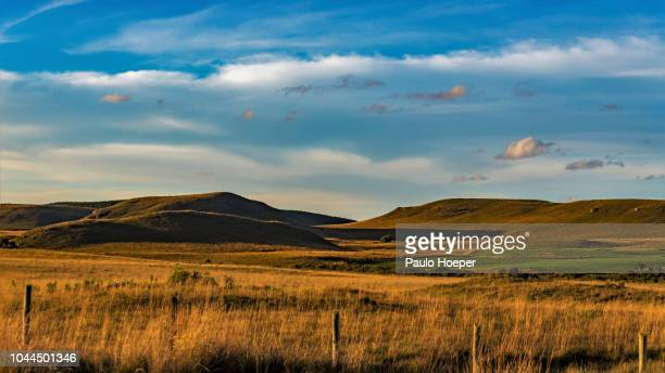 campos de cima da serra - country geographic area stock pictures, royalty-free photos & images