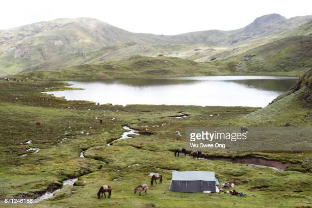 Campsite at Lares valley