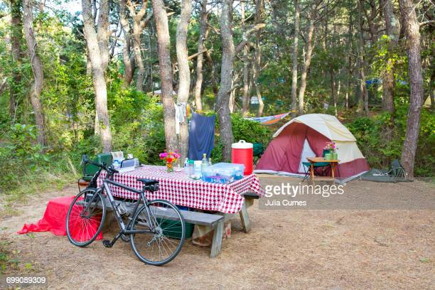Campsite in the woods.