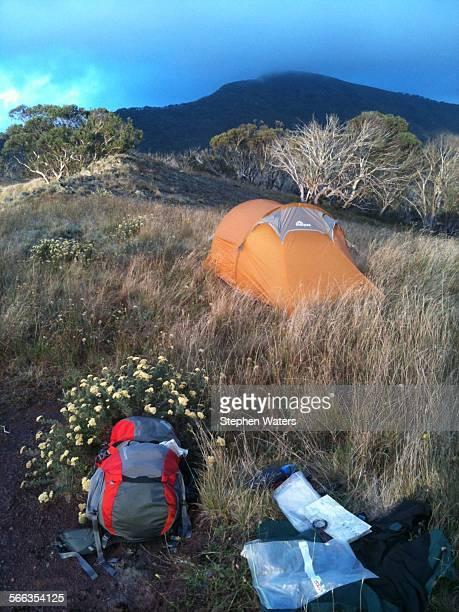 Campsite on Helicopter Spur Alpine National Park Victoria Australia
