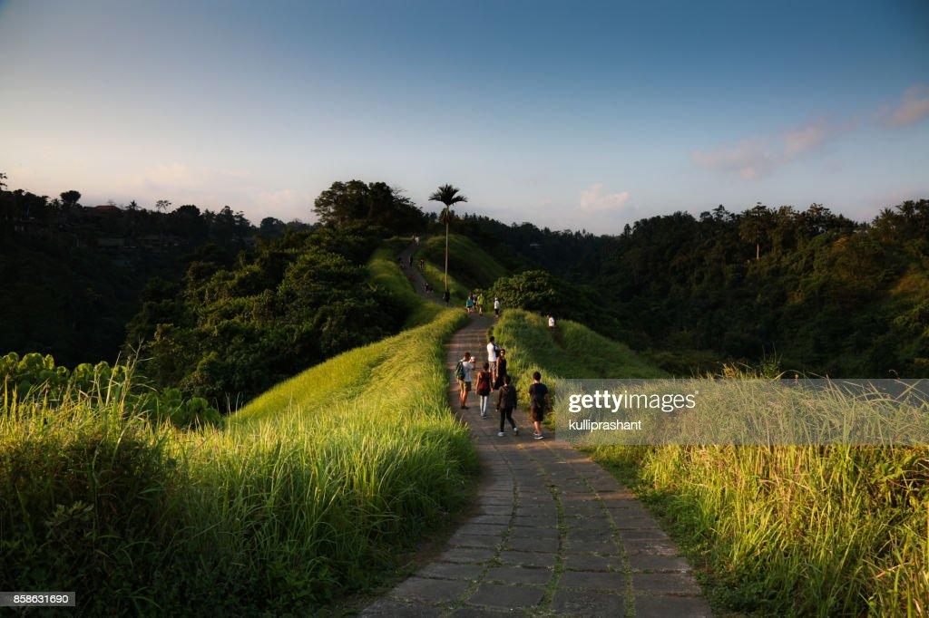 Campuhan Ridge Walk, Ubud, Bali, Indonesia : Stock-Foto