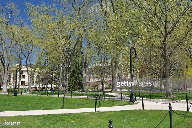 campus of penn state in spring - state college pennsylvania stock photos and pictures